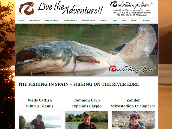 Cat Fishing Spain