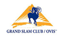 Grand Slam Club Ovis
