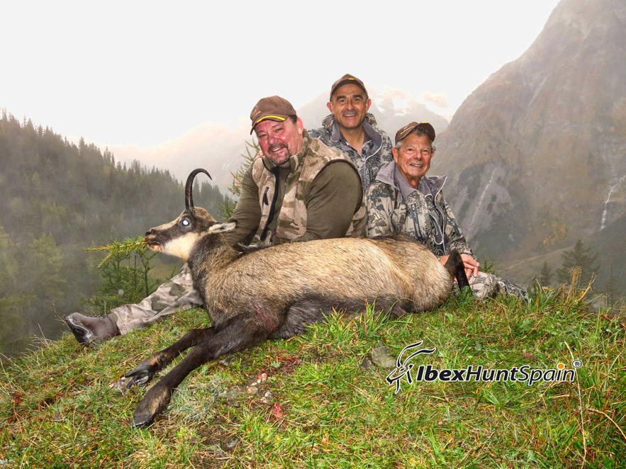 Alpine Chamois hunting in Switzerland