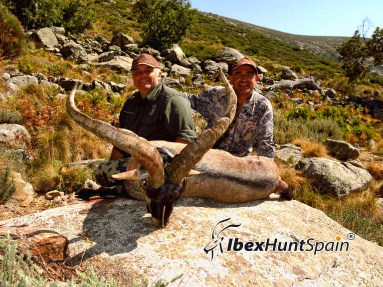 Gredos Ibex Hunt in Spain – Hunting Gredos Ibex