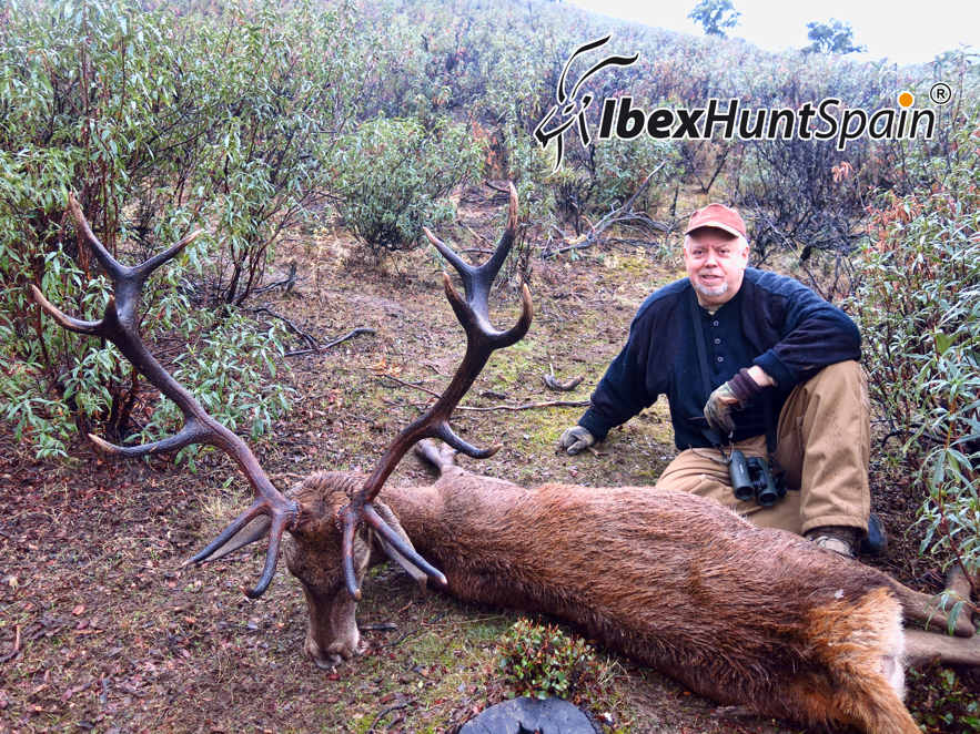 Iberian Red Deer Hunting in Spain