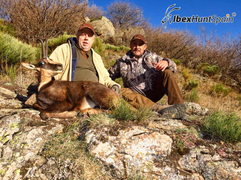 Pyrenean Chamois hunting I Iberian red deer hunting in Spain