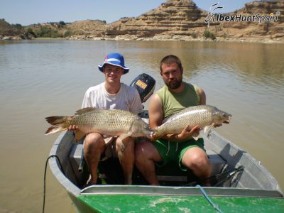 Carp fishing in spain - fishing in spain - mequinenza