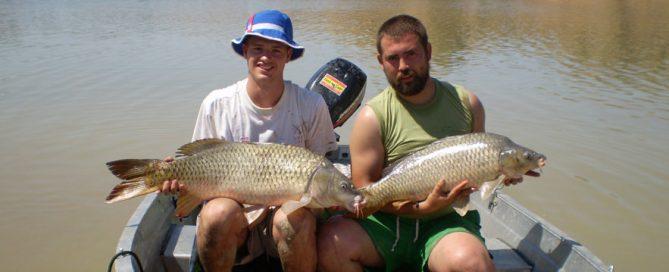 Carp fishing in spain - fishing in spain - mequinenza