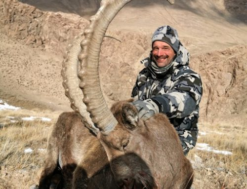 Marco Polo and Mid-Asian Ibex by R. Buehler